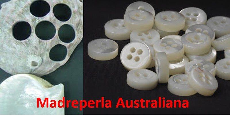 Bottoni madreperla australiana